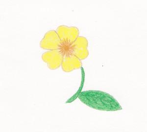 Colored Pencil Sketch