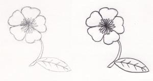 Pencil vs Ink